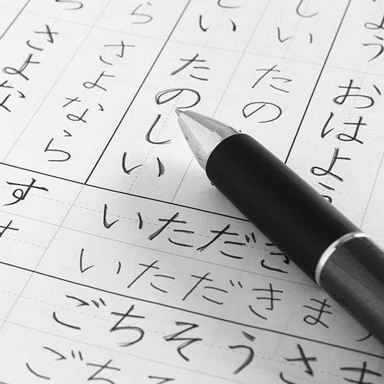 日本語教育も充実させています