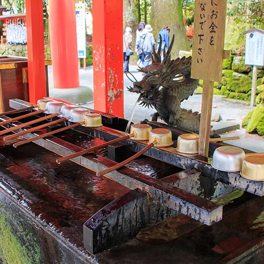 日本の文化についても教育します